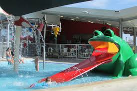 Fiberglass frog for Splash pool show gold coast